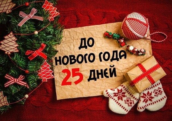 До нового года 28 дней